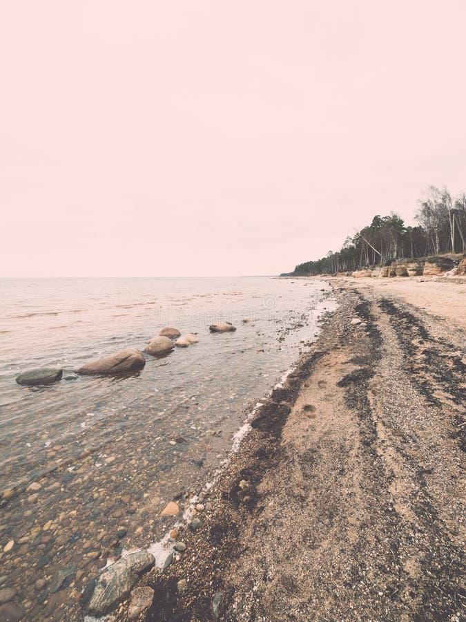 Praia rochosa com as ondas que deixam de funcionar nas rochas - vintage do outono ef foto de stock royalty free