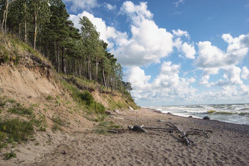 Praia selvagem da areia imagem de stock royalty free