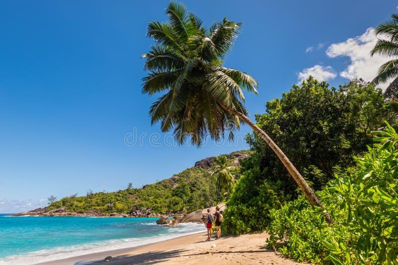 Praia selvagem do major de Anse em Mahe Island, Seychelles fotografia de stock royalty free