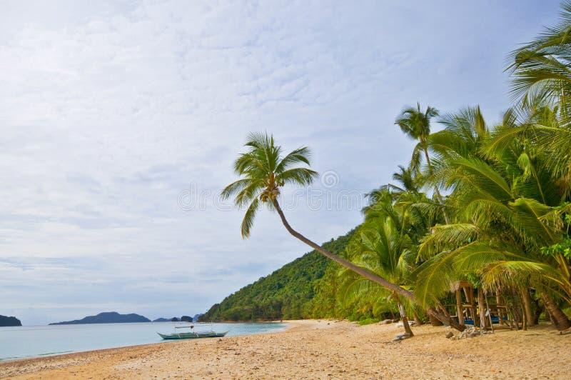 Praia selvagem exótica imagem de stock