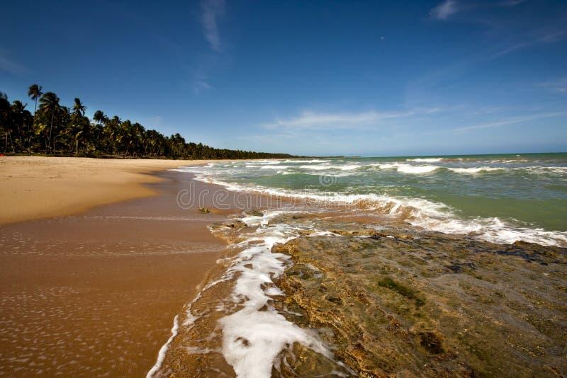 Praia Serena - Macejo fotografía de archivo libre de regalías