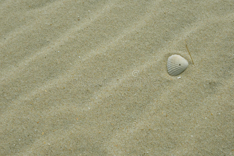 Praia Sylt da água fotos de stock royalty free