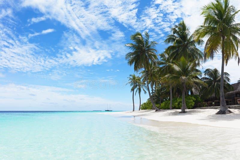 Praia tópica imagem de stock royalty free