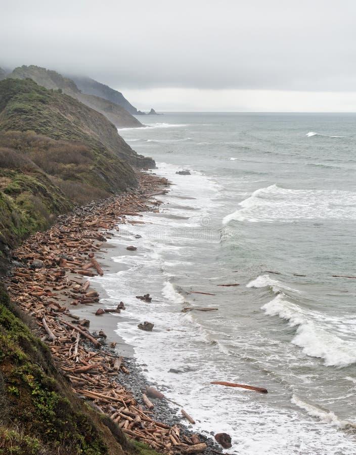 Praia, tempestade e madeira lançada à costa de Oregon foto de stock royalty free