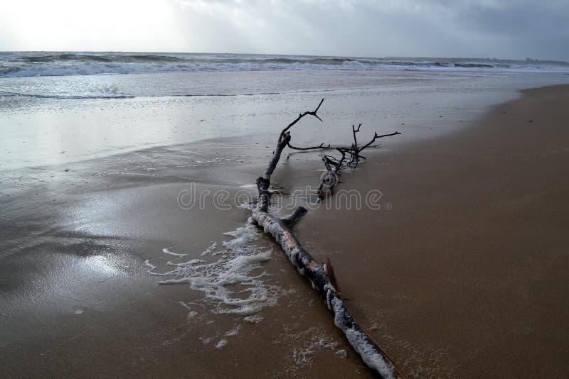 Praia tormentoso imagem de stock royalty free