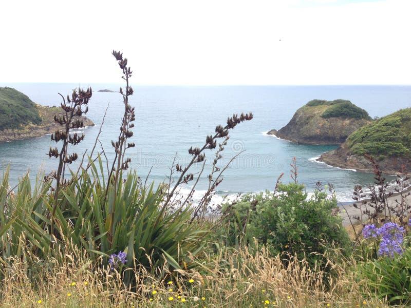 Praia traseira em Plymouth novo fotografia de stock
