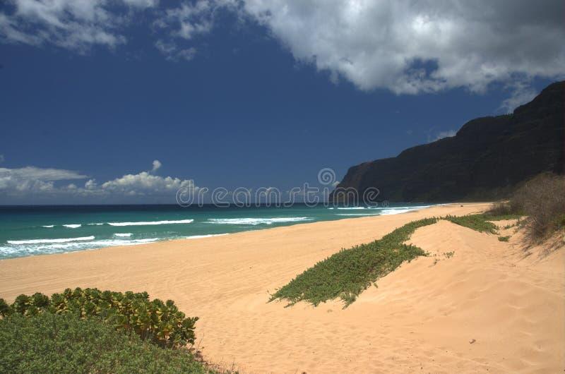 Praia tropical imagem de stock