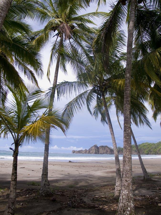 Praia tropical abandonada bonita foto de stock royalty free