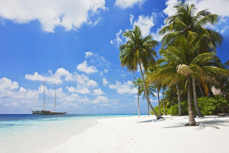 Praia tropical bonita imagem de stock royalty free