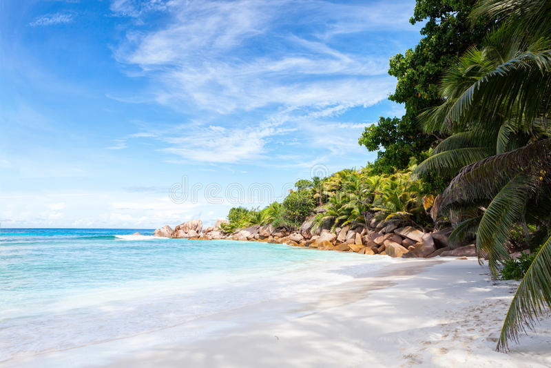 Praia tropical bonita da areia com rochas do granito e palmeiras do coco La Digue, Seychelles foto de stock