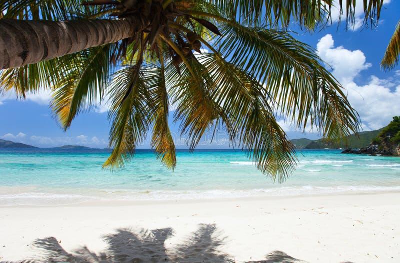 Praia tropical bonita nas Caraíbas fotos de stock