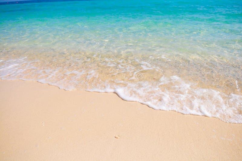 Praia tropical com a areia coral branca fotografia de stock