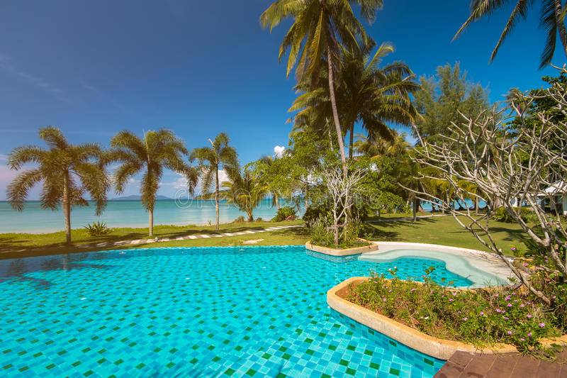 Praia tropical com palmas e piscina de coco fotografia de stock