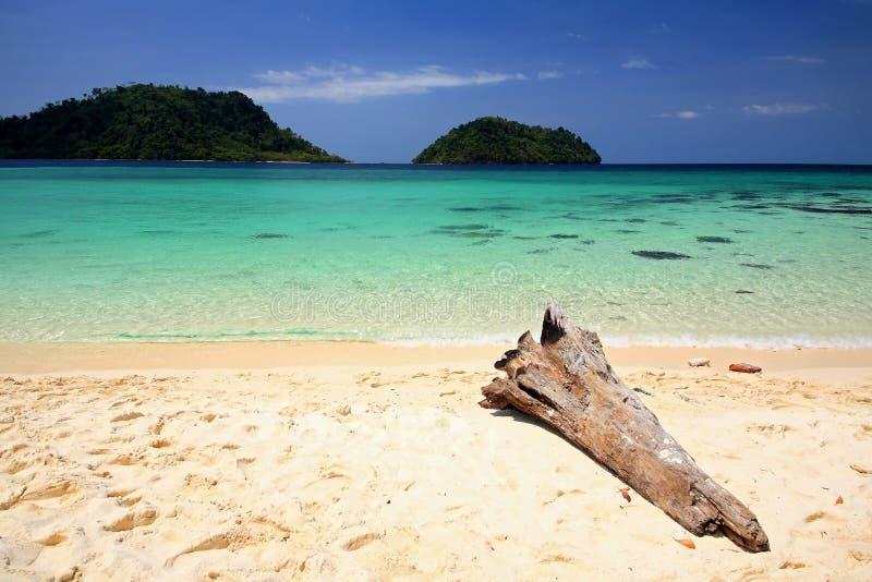 Praia tropical com registro de madeira e o mar de Andaman de cristal fotos de stock royalty free