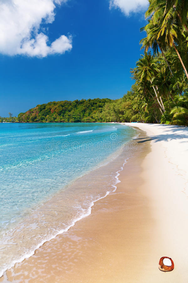 Praia tropical, console de Kood, Tailândia foto de stock royalty free