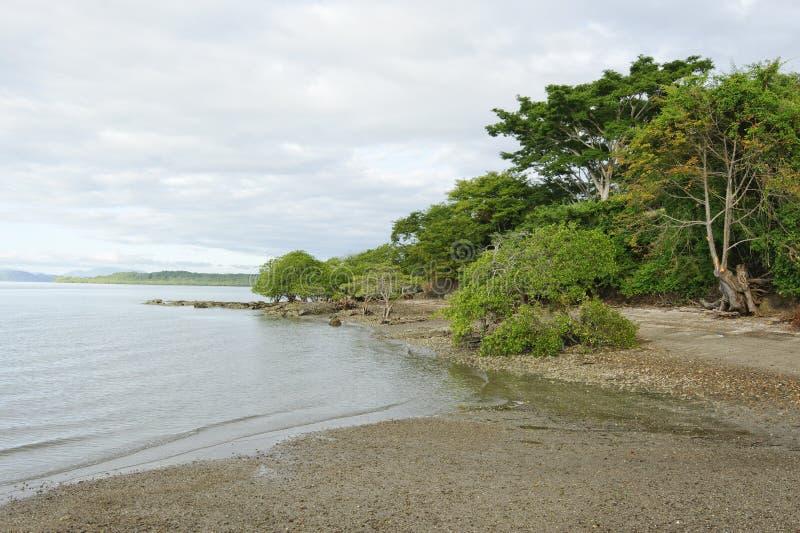 Praia tropical, Costa Rica fotografia de stock