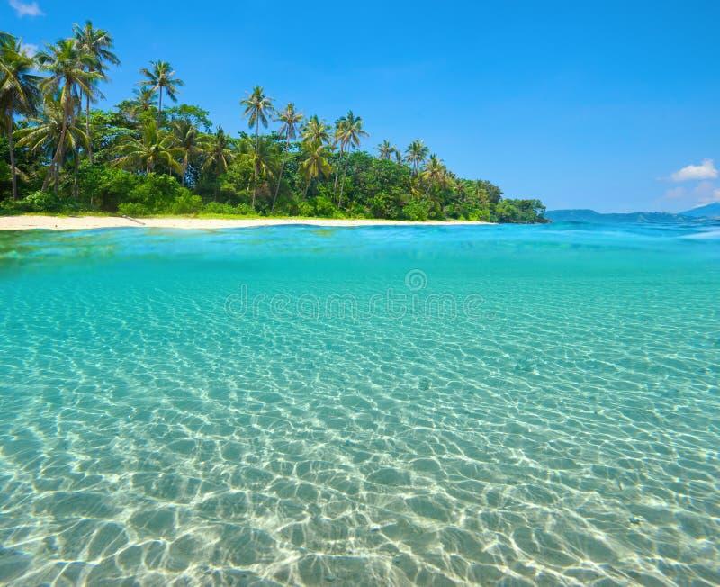 Praia tropical da ilha com a meia vista subaquática com cama de mar foto de stock