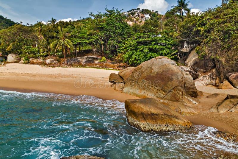 Praia tropical de Coral Cove da rocha com palmeiras do coco Koh Samu imagem de stock royalty free