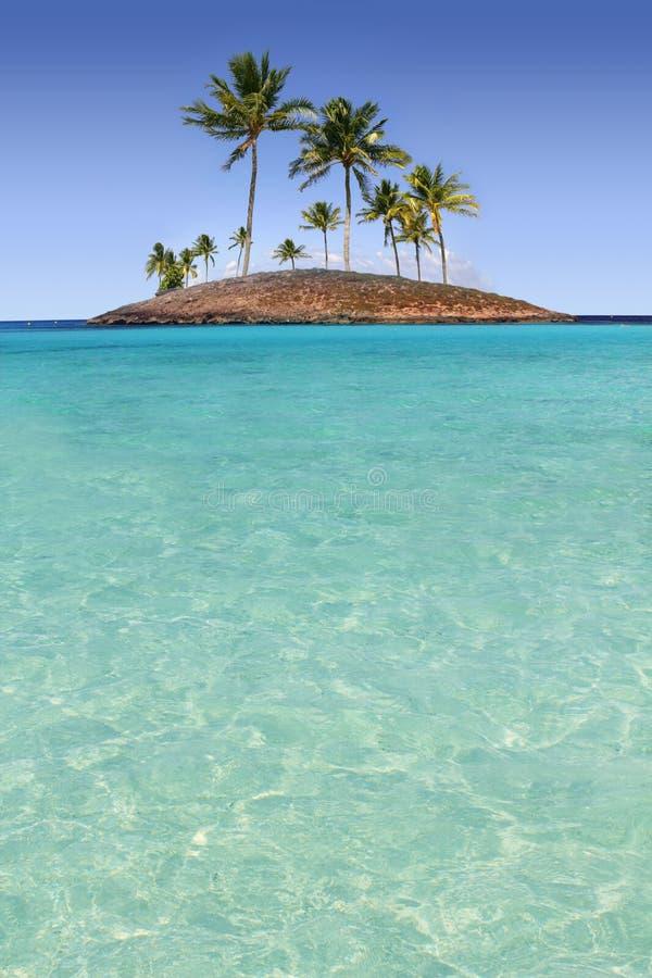 Praia tropical de turquesa do console da palmeira do paraíso foto de stock royalty free