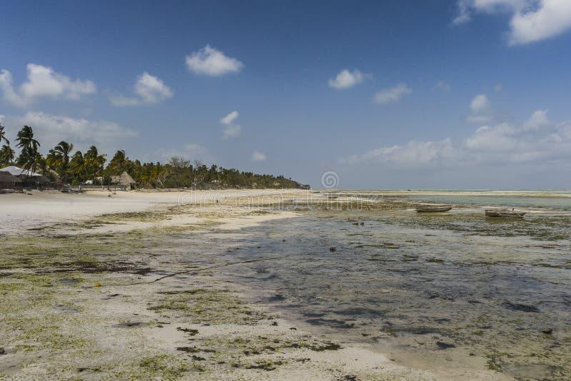 Praia tropical de Zanzibar, fotografia panorâmico imagens de stock royalty free