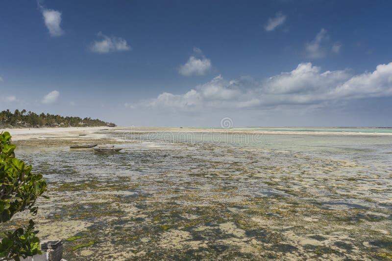 Praia tropical de Zanzibar, fotografia panorâmico foto de stock