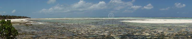 Praia tropical de Zanzibar, fotografia panorâmico imagem de stock