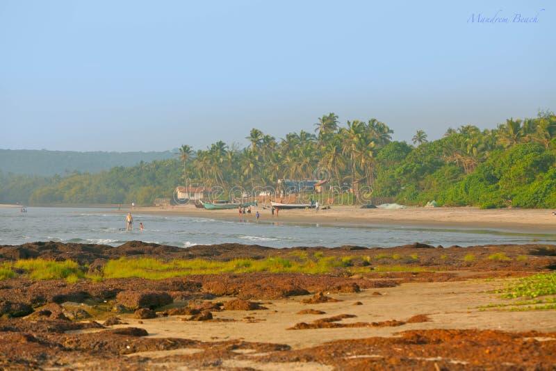Praia tropical em Goa fotografia de stock royalty free