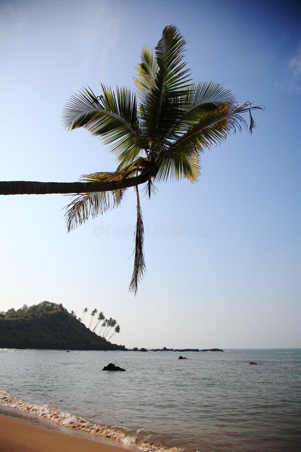 Praia tropical em Goa, India imagem de stock
