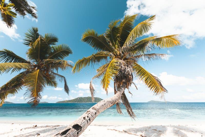Praia tropical em Seychelles fotografia de stock