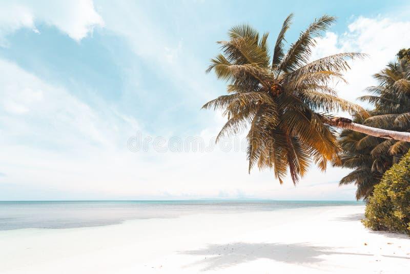 Praia tropical em Seychelles imagens de stock