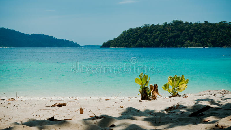 Praia tropical em Tarutao Nationalpark, Tailândia imagem de stock
