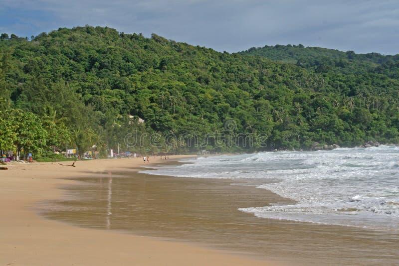 Praia tropical isolado fotografia de stock royalty free