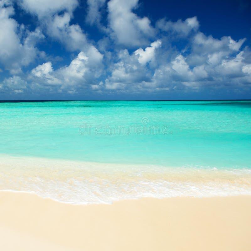 Praia tropical Ondas de oceano e fundo do céu nebuloso foto de stock