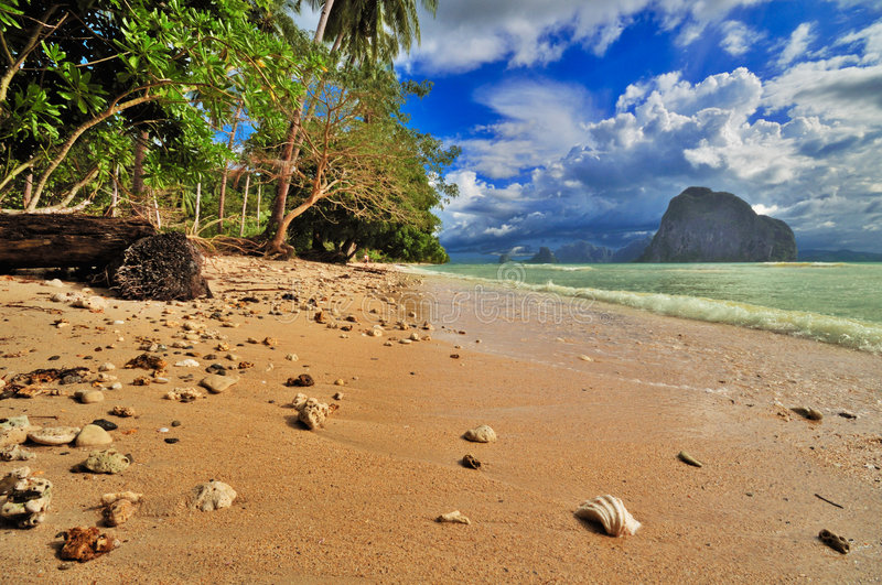 Praia tropical selvagem foto de stock