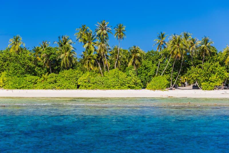Praia tropical sem tocar, praia de Maldivas imagem de stock royalty free