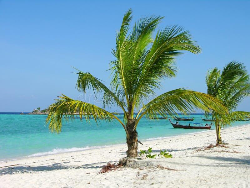 Download Praia tropical, Tailândia imagem de stock. Imagem de verde - 12807425