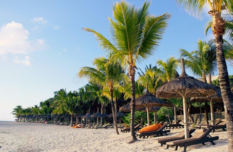 Praia vazia pelo nascer do sol em Maurícias foto de stock