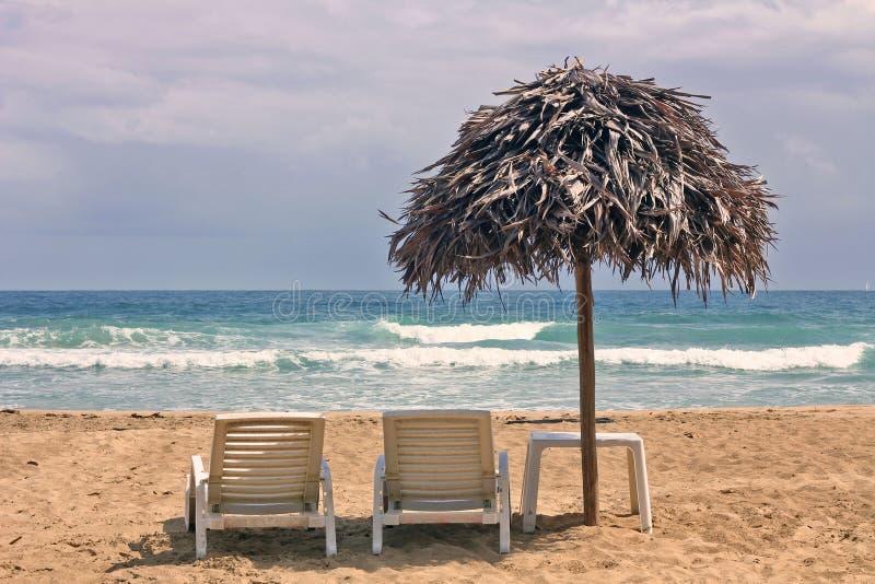 Praia vermelha da rã, del Toro de Bocas, Panamá fotografia de stock royalty free