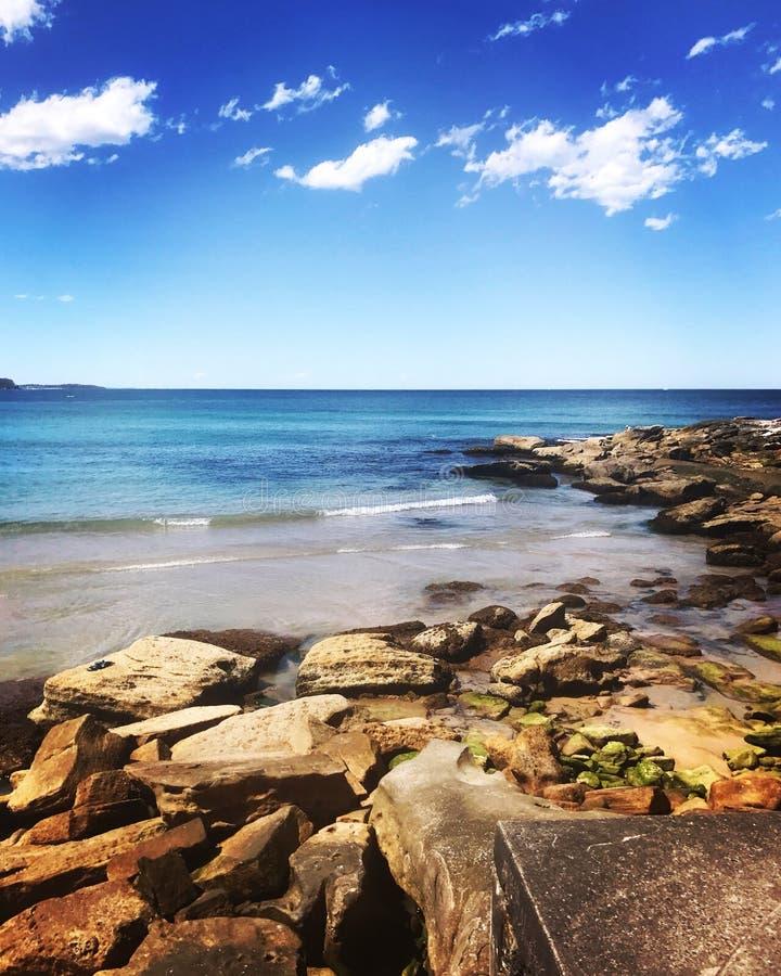 Praia viril Sydney imagem de stock royalty free