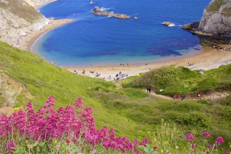 Praias bonitas de Dorset, Reino Unido imagem de stock