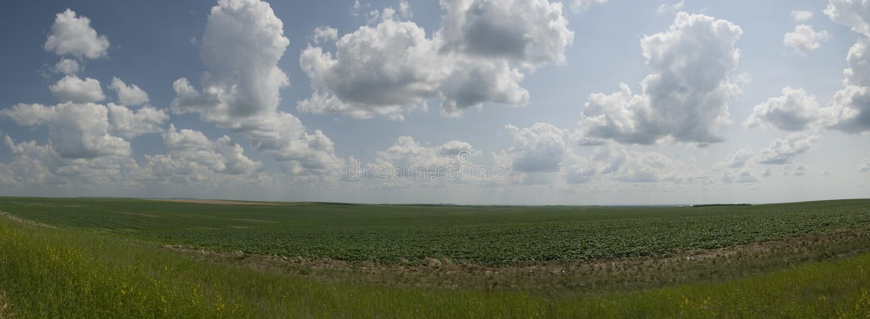 prairie image libre de droits