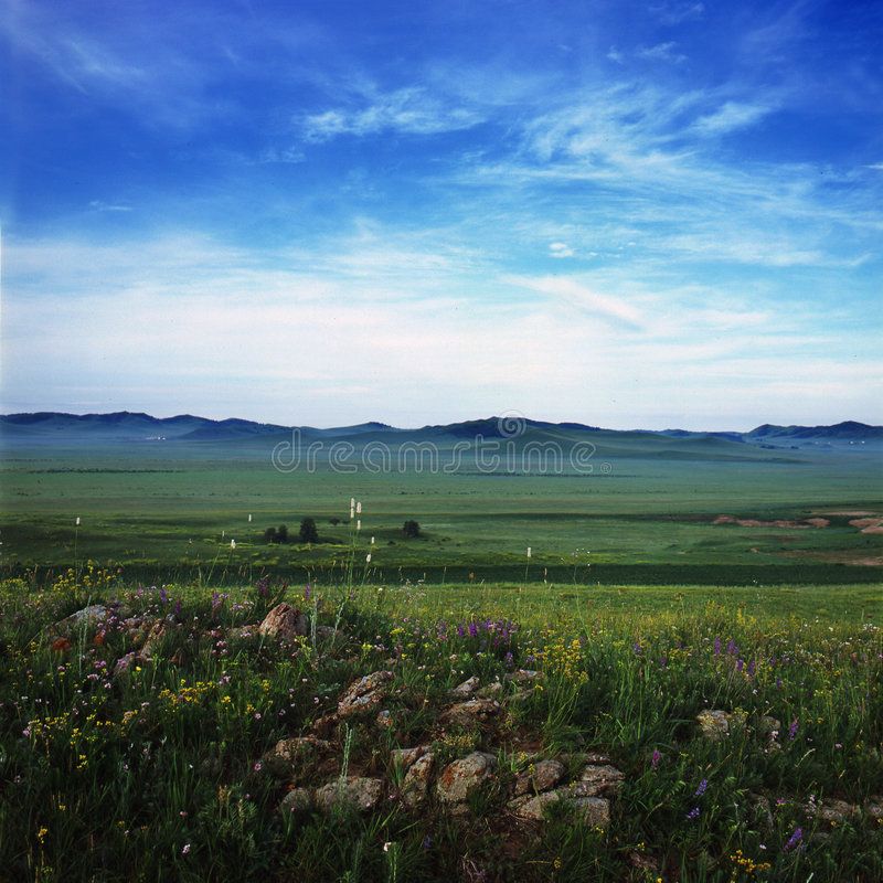 Prairie images stock