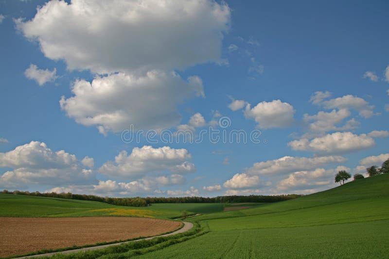 Download Prairie photo stock. Image du herbe, arbre, cloudscape - 727216