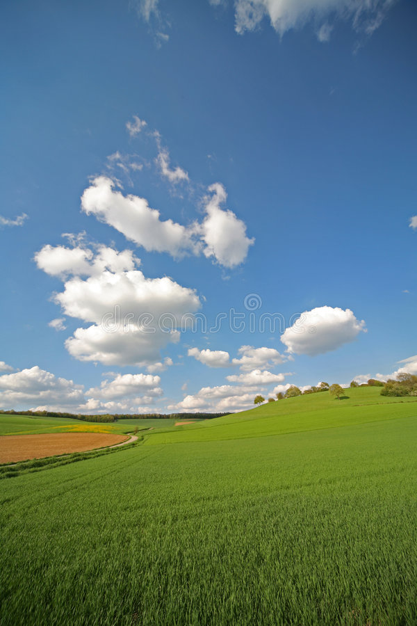 Download Prairie image stock. Image du nature, pré, cloudscape, centrale - 727565