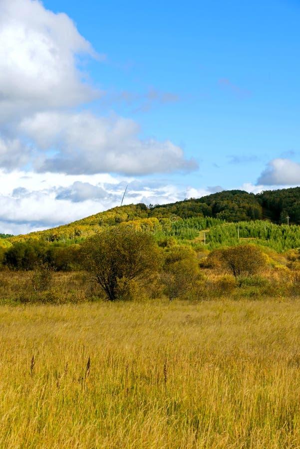 The prairie autumn scenery stock photography