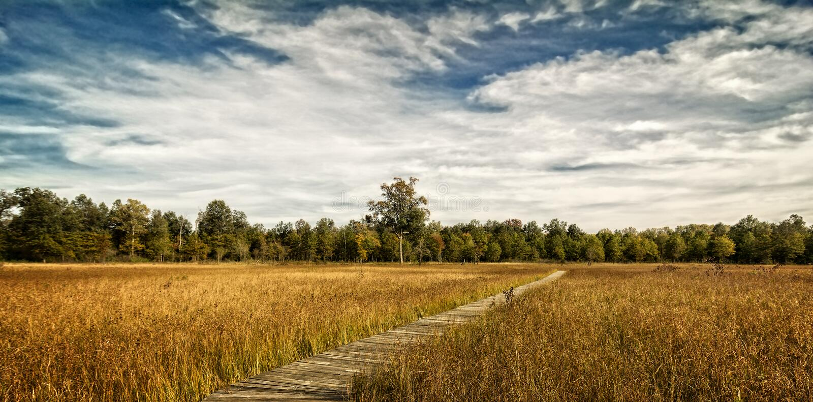 Prairie Boardwalk stock photo