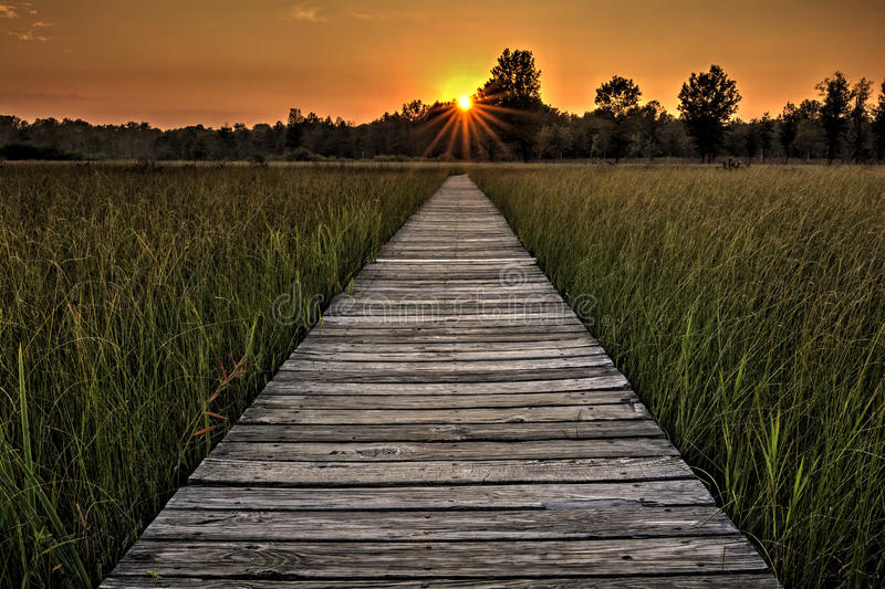 Prairie Boardwalk Sunset royalty free stock image
