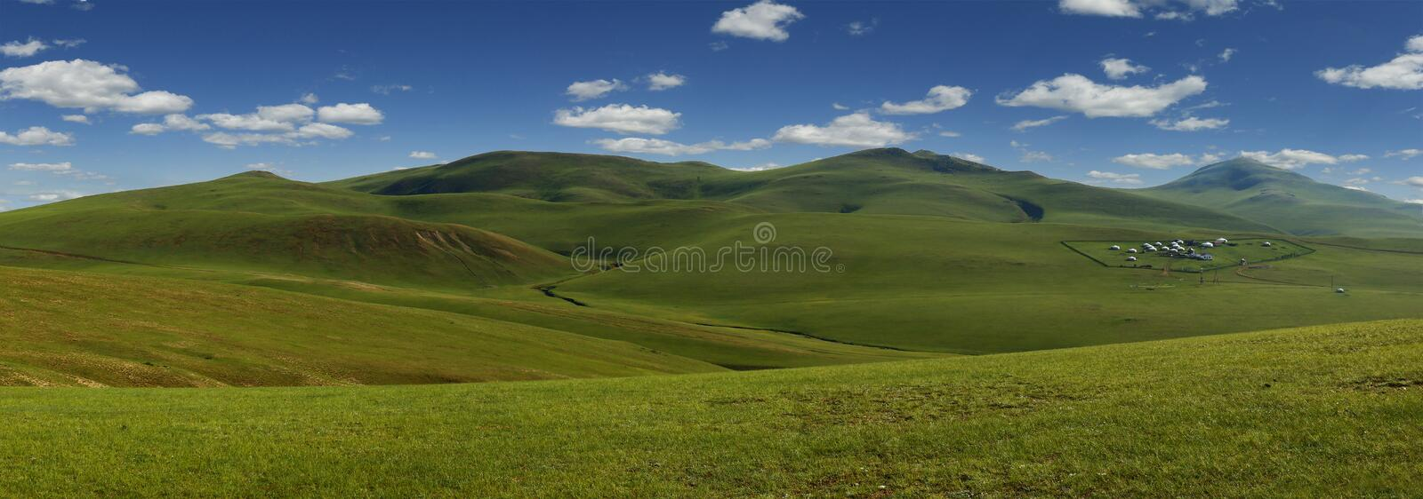 Prairie dans la steppe de la Mongolie photo stock