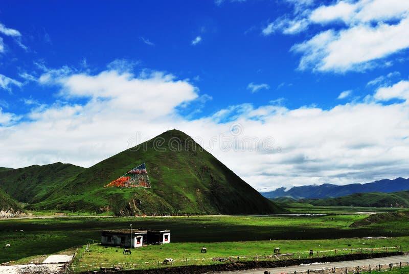 Prairie de Tagong photographie stock libre de droits