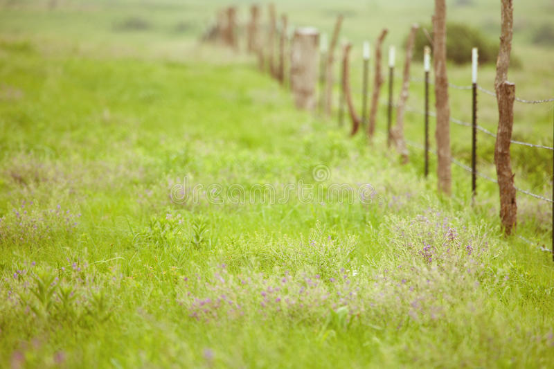 Download Prairie fence stock image. Image of distance, summer - 27892103